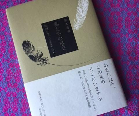 konohoshinodokoka